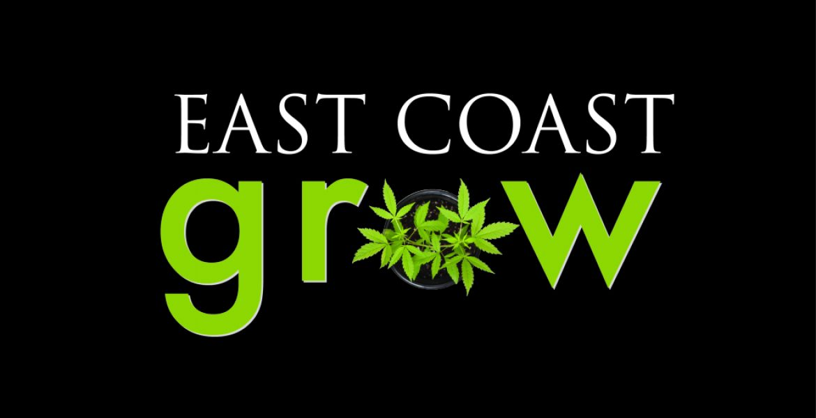 Marijuana Meets Workplace Comedy – East Coast Grow Series